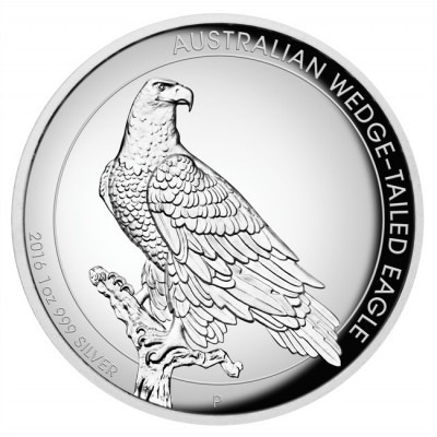 Wedge-Tailed Eagle High Relief